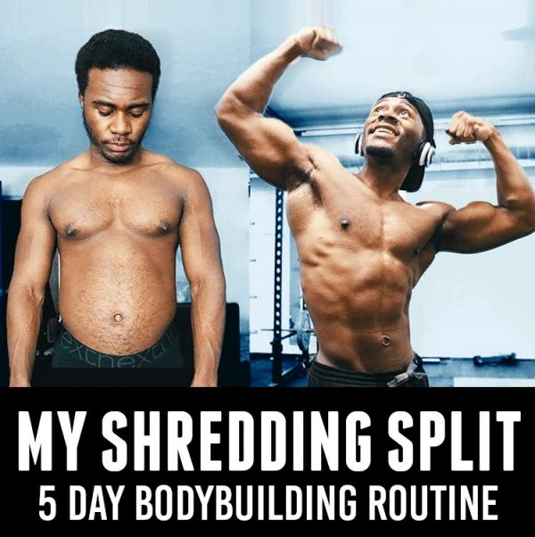 Shredding 5 day routine image